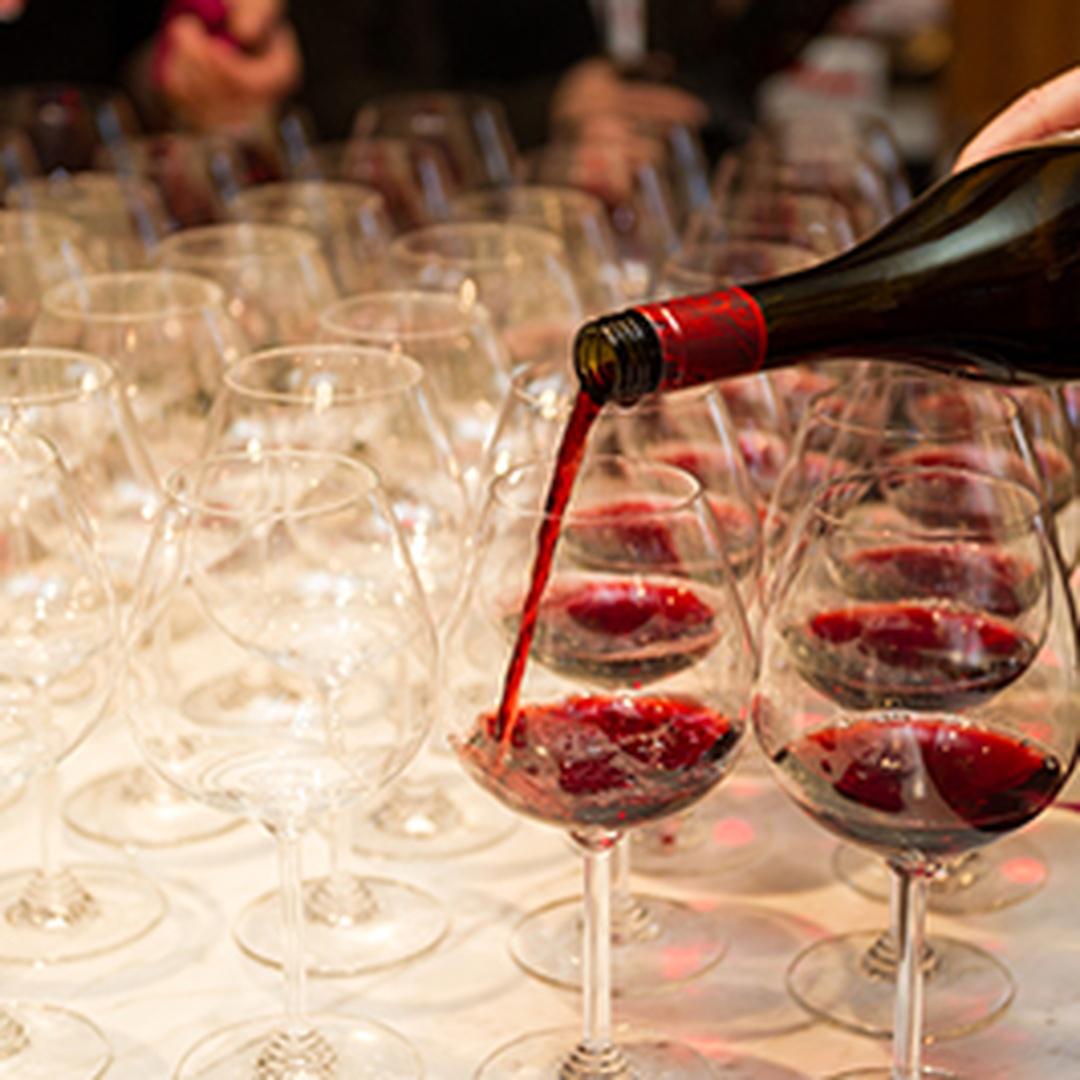 Drink Seminar: Sangio-Crazy